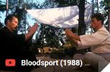 bloodsport, karate