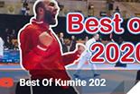 best of kumite 2020, karate