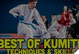Best of Kumite Karate - Techniques and Skills, karate