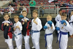 Kadzan-karate-Latvia-Open-2016-02